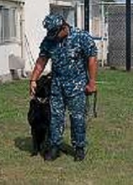 "YOKOSUKA, Japan (Aug. 16, 2011) - Master-at-Arms 2nd Class Roberto Aguilar pets his military working dog ""Nick"" after completing the K-9 unit's obstacle course at Fleet Activities Yokosuka (CFAY). The Military working dogs at CFAY are used to support combat operations by providing specialized mission services such as drug and explosive detection. (U.S. Navy photo by Mass Communication Specialist 3rd Class Matthew R. Cole)"