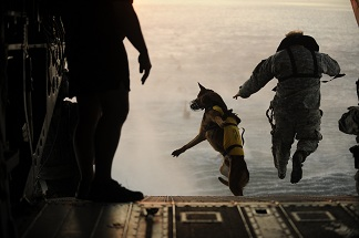 A U.S. Army soldier and his militaryworking dog jump off the ramp of a helicopter during training
