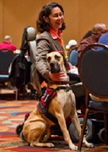 Getting a Service Dog can assist with many issues and the dog can become a terrific companion.  If you need a Service Dog, we have information and referrals here